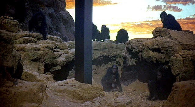 stupid monkeys looking at a monolith